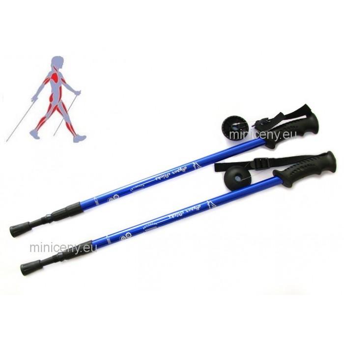 Trekingové palice MODRÉ - sada ( 2 palice), trekové teleskopické palice pre turistiku, nordic walking