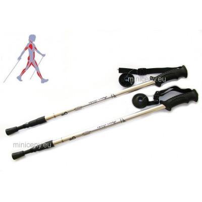 Trekingové palice STRIEBORNÉ - sada ( 2 palice), trekové teleskopické palice pre turistiku, nordic walking